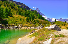 le ciel bleu se mire dans le lac Vert (Grnsee)    Green lake and blue sky above Zermatt (www.nathalie-chatelain-images.ch) Tags: switzerland valais zermatt cervin matterhorn montagne mountain lacvert grnsee mlzes larch ciel sky bleu blue sentier footpath lac lake vert green