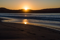 Sunrise at Umina Beach (Merrillie) Tags: daybreak uminabeach nikon sunlight sun nature australia waves boat d5500 nswcentralcoast waterscape newsouthwales sea water nsw surflifesaving beach ocean centralcoastnsw umina rowers photography rowboat outdoors seascape landscape centralcoast sunrise tractor