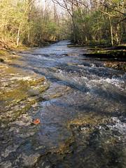 Lazarus Run (Delaware County, Ohio, USA) 7 (James St. John) Tags: lazarus run creek creeks stream streams delaware county ohio limestone devonian