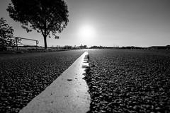 Country Road (camerue) Tags: road landscape sun backlight asphalt monochrome fujifilmx