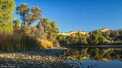 Sunrise at Del Valle,Livermore (katiewong511) Tags: naure livermore park regional landscape sunrise reflections lake california eastbay ebprd water light