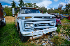 Dave's Rusty Relics (Peterson Phtography) Tags: rustyrelics rust rusty davesrustyrelics relics whatcomcounty washington washingtonstate stateofwashington bellingham oldcars oldtrucks cars trucks vintage vintagecars vintagetrucks vintagecarsandtrucks classiccars classictrucks classic decay weathered forsale carparts old delapitated