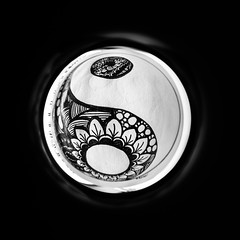 Day 3 (kamirave) Tags: fathers mother father mandala aboutmeproject kamirave fisheye yinyang