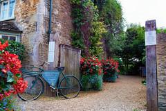 The Hunting Lodge (Pat Charles) Tags: lacock england wiltshire unitedkingdom uk travel tourism bike bicycle flowers plant plants tea room cafe shop hightea garden nationaltrust nikon