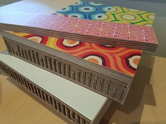 Printed Plywood with Xanita Core