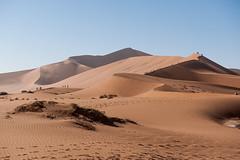 namibia2015-121 (yriis) Tags: namib desert sand immensity uninhabited wildness dune travel 45 red sky blue africa namibia kalahari