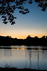 Etang des forges (Amylee_90) Tags: extrieur ciel calme coucher de soleil lac paysage eau arbre crpuscule