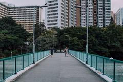 Bridge. (hadogumu) Tags: sigma sdq sdquattro foveon foveonx3 x3 30mmf14 30mmart snap taipo hongkong citylife cityscape urban bridge river publichousing estate kwongfukestate