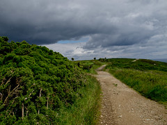 howth track (glasnevinz) Tags: ireland howth dublin track path stormclouds binnadair