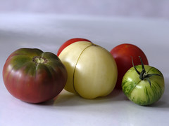 _1150030 (Old Lenses New Camera) Tags: stilllife plants garden tomatoes harvest cine panasonic telephoto g1 f25 wollensak 63mm 212inch
