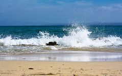 The wave (annfrau) Tags: sea beach mare wave foam rough spiaggia onda mosso schiuma