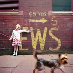 EWS (polarisandy) Tags: street portrait dog film rolleiflex mediumformat kodak 66 analogue pushed portra planar rolleiflex35f polarisandy wwwpolarisandycom