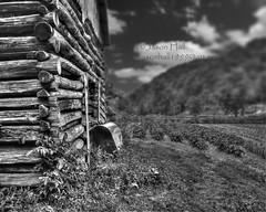 Pa Sam's Barn (Man From Jackson) Tags: barn log farm kentucky logbarn breathittcounty turnerscreek