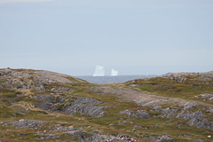 Fogo Icebergs (AtlanticRebel) Tags: day cloudy iceberg fogo