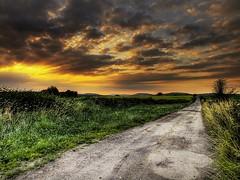 Follow (Eric Goncalves) Tags: light sunset sky sun color nature landscape rays array ericgoncalves rememberthatmomentlevel4 rememberthatmomentlevel1 rememberthatmomentlevel2 rememberthatmomentlevel3 rememberthatmomentlevel7 rememberthatmomentlevel9 rememberthatmomentlevel5 rememberthatmomentlevel6 rememberthatmomentlevel8