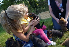 Ava and puppy 11