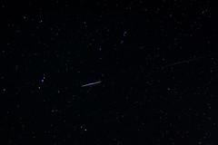 Perseid meteor (www.mathiasvejerslev.dk) Tags: copenhagen stars denmark shower star heaven astro astrophotography shooting danmark meteor 2012 meteors perseid perseids astrofoto astrometrydotnet:status=solved meteorregn astrometrydotnet:version=14400 perseiderne oerseids astrometrydotnet:id=alpha20120985690270