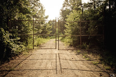 Stopped Dead in My Tracks (Justin Wolfe) Tags: road wood trees sunset shadow wild sun sunlight tree green nature leaves yellow rural forest fence landscape evening virginia leaf woods gate closed industrial bright path south country tracks entrance sunny dirt va yorktown noentry wilderness fenced bushes locked gravel sunray trespassing shutoff