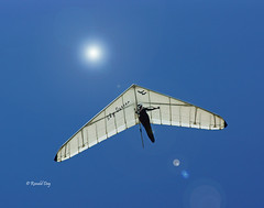 "Hang Glider ~Grant Emary in ""Sky Dancer""~ (Ron1535) Tags: golden colorado wing sail roll pitch glider lookoutmountain pilot thermals mtzion hanggliding deltaplane yaw rigidwing airframe hanggliders skydancer freeflight windcurrents freeflyers glideraircraft"