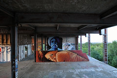 Teufelsberg Murals - Found In Berlin - JBAK - James Bullough & Addison Karl (karl_addison) Tags: street sunset portrait urban orange brown mountain color building berlin art girl yellow festival wall lady germany painting person graffiti artwork women friend mural warm paint pretty artist purple humanity culture human devil ephemeral 2012 abandond teufelsberg artbase devilsmountain jbak karladdison jamesbullough