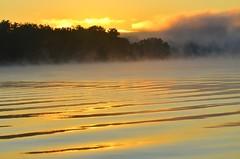 DSC_9817 (johnjmurphyiii) Tags: summer usa macro sunrise dawn connecticut middletown harborpark connecticutriver 06457 johnjmurphyiii