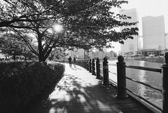 Nikkor24_Yokohama_20120819_33 (Jun Takeuchi) Tags: film japan nikon fuji streetphotography 日本 fujifilm neopan yokohama filmcamera nikkor kanagawa minatomirai 横浜 fm2 神奈川 神奈川県 みなとみらい filmphotography newfm2 fm2n neopan100 kishamichi kishamichipromenade neopan100acros 横浜市 汽車道 nikkor2824