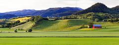 Ler,  Gauldalen, June 20, 2016 (Ulf Bodin) Tags: norway canoneos5dmarkiii summer aunsen farm norge landscape melhus meadow outdoor panorama hill ler fribetet srtrndelag no gauldalen