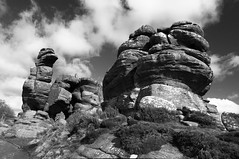 Brimham Rocks (Richie Rue) Tags: england blackandwhite monochrome stone landscape outdoors mono countryside rocks stones yorkshire stack geology brimham nikond300