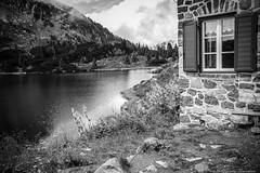 A window  with a view toward dreams  .. (alessandrafinocchiaro67) Tags: monochrome black white nature peace quite beauty beautiful lake colbricon nikond750 fx