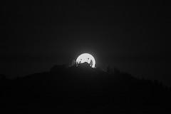 fantasia2 (conteluigi66) Tags: luigiconte luna contrasto montagna monocromo