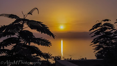 Sun setting on the Dead Sea, Jordan (The Happy Traveller) Tags: sunset sunrisesunset deadsea water sea scenery waterreflection jordan silhouttes
