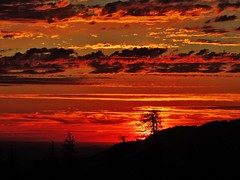 the firestorm... (BillsExplorations) Tags: sequoianationalpark nationalpark park sequoia trees silhouette sunset dusk evening sky clouds cloudsstormssunsetssunrises mountains california vivid fire firestorm wildfire smoke prescribedburn conservation