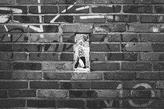 Another Brick in the Wall (marcin baran) Tags: black whote white blackwhite blackandwhite bw mono monochrome woman frame framing brick bricks wall symmetry pov original awesome street streetphotography streetphoto poland polska gliwice fuji fujifilm fujix100 x100 x100t urban people human element city pavement writing