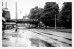rainy street (Onascht) Tags: cologne dom house kln nrw nikond610 regen sigma50mm sommer strasse unterfhrung black bridge brcke rain rainy schwarzweis street sundaymorning tree white nordrheinwestfalen deutschland de