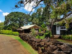 Grove Farm (16 of 16) (Chuck 55) Tags: grove farm kauai hawaii