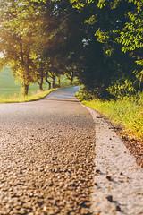 Golden Road (mripp) Tags: summer sommer bavaria bayern street road strase landscape oberpfalz retro vintage old