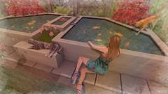 Relaxing day (Anita Armendaiz) Tags: breathe cat event fish furniture mag3b maitreya mesh pet romantic second life shiny shabby tlc truth hair uber