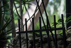 broken (-gregg-) Tags: gate stone palm trees island light