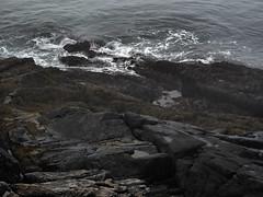 Cape Rocks (tvordj) Tags: novascotia rocks oceanscape