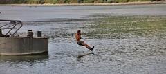 Jump 2 (Hugo von Schreck) Tags: jump germany rhine rhein osterspai hugovonschreck europe canoneos5dsr tamron28300mmf3563divcpzda010 outdoor river fluss