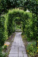 Under the Arches (Jocey K) Tags: newzealand christchurch flowers archway path curatorshousegardens flower gardens