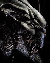 Nightmare (\Nicolas/) Tags: aliens alien monstre monster nightmare movie film horror scifi sciencefiction