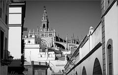 Catedral et Giralda de la Calle Dos de Myos, Sevilla, Andalucia, Espana (claude lina) Tags: claudelina espana spain espagne andalucia andalousie ville town city sevilla sville architecture catedral cathdrale giralda catedralsevilla