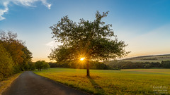Autumn is near (Karl-Alwin) Tags: sunset taunus landscape