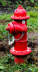 Dog's 2nd Best Friend (Kerry Wright2013) Tags: firehydrant red hydrant omdem5markii