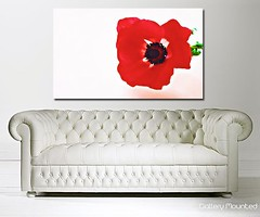 RED POPPY PETALS (Canvas Art Shop) Tags: flowers art floral wallart posters prints homedecor flowerart floralprints canvasart canvasprints flowerprints flowerwallart flowercanvasprints flowercanvasart
