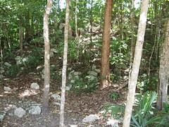 L4030181.JPG (NothingToDeclare) Tags: mexico ruins maya coba zona roo quintana arqueologica