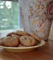 Oatmeal Chocolate Chip Cookies (jillian_w) Tags: blur kitchen cookie yum chocolate oatmeal crop infocus