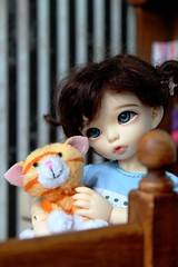 IMG_4823 (*Randomfish) Tags: emily fairylandlittlefeeante