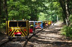 IMGP6366 (geepstir) Tags: car reading pennsylvania rail pa shamokin speeder sunbury narcoa